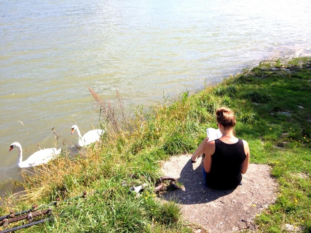 Inge leest aan de oever van de Rijn