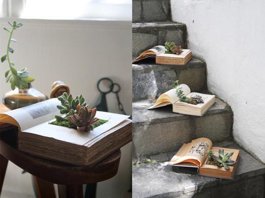 Vetplantjes in boek